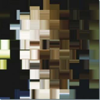 "Cover of ""Algorithmic mirror"""